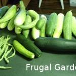 14 Money-saving Gardening Tips